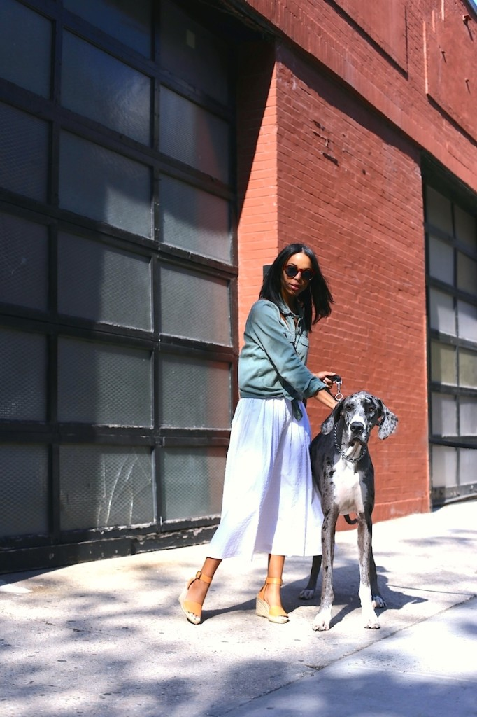 new-york-street-style-woman-with-dog-682x1024